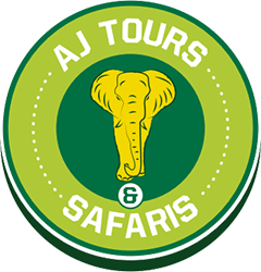 AJ Tours and Safaris